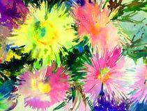 浪漫水彩艺术背景摘要五颜六色的织地不很细花翠菊创造性的春天 库存图片