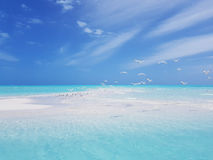 浪漫热带海景 库存图片