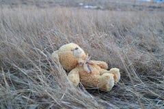 浪漫玩具熊的梦想家 免版税库存图片