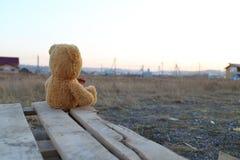 浪漫玩具熊的梦想家 图库摄影