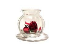 浪漫玫瑰色花瓶 免版税库存照片