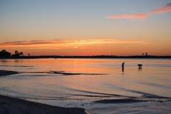 浪漫男人和妇女现出轮廓shell收集在海滩在日落 库存照片