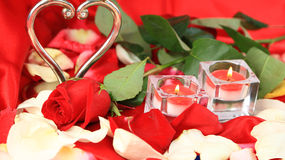 浪漫的情人节上升了 免版税图库摄影