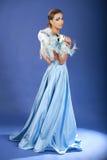 浪漫秀丽蓝色狂欢节的屏蔽 库存照片
