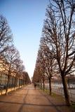 浪漫秋天在巴黎 免版税库存图片