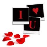 浪漫胶卷画面和玫瑰花瓣 免版税库存图片
