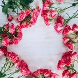 浪漫花卉玫瑰框架葡萄酒背景 免版税库存照片