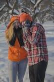 浪漫逗人喜爱的夫妇在冬天 库存照片