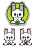 浪漫逗人喜爱的花藏品的兔子 库存图片