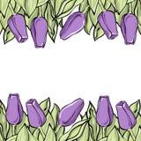 浪漫郁金香构成,在中立白色后面的淡紫色花 库存图片