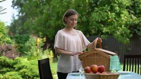 浪漫野餐在乡间别墅,丈夫拥抱的妻子,愉快的嫩家庭里 股票视频