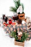 浪漫野餐在冬天 为两服务的装饰的桌被盖 图库摄影