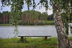 浪漫长凳的河 库存图片