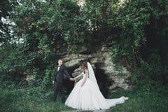 浪漫,童话,拥抱和亲吻在公园,树的愉快的新婚佳偶夫妇在背景中 库存图片