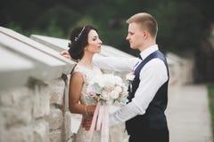 浪漫,童话,拥抱和亲吻在公园,树的愉快的新婚佳偶夫妇在背景中 免版税图库摄影