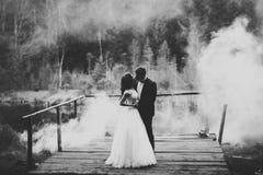 浪漫,童话,拥抱和亲吻在公园,树的愉快的新婚佳偶夫妇在背景中 库存照片
