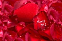 浪漫结婚提议 免版税库存图片