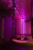 浪漫紫色温泉 图库摄影