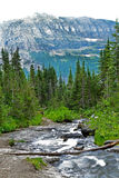 浪端的白色泡沫小河在冰川国家公园 库存图片