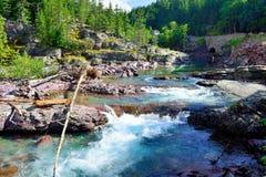 浪端的白色泡沫急流在冰川国家公园 库存照片
