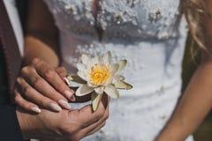 浪端的白色泡沫百合在新婚佳偶5241的手上 库存照片
