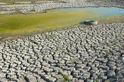 浪费的干燥沼泽 库存照片