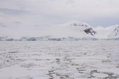 浮冰块,南极洲的领域 库存照片