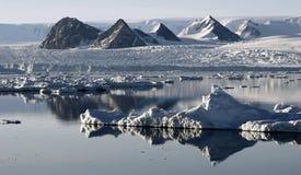 浮冰类似于冰的山 免版税库存图片