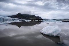 浮冰 免版税图库摄影