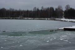 浮冰 库存照片