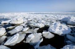 浮动冰在Shiretoko,北海道,日本 免版税库存照片