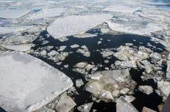 浮动冰 库存图片