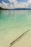 浮动木头在海的 库存图片
