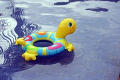 浮动的乌龟 免版税库存图片
