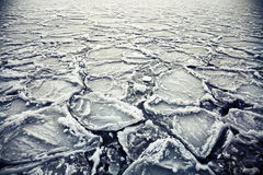浮动的冰 库存图片