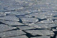 浮动的冰 库存照片