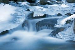 浮动的冰 免版税库存照片