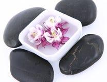 浮动的花温泉石头 免版税库存照片