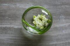浮动的莲花 库存图片