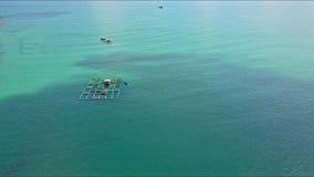 浮动龙虾农场鸟瞰图在镇静天蓝色的海洋中的 影视素材
