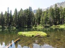 浮动Island湖 库存照片