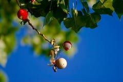 浮子树 免版税图库摄影