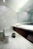 浴内部空间 免版税库存图片