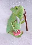浴变色蜥蜴时间 免版税库存图片