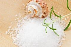 浴接近的迷迭香盐 免版税库存照片