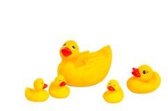 浴明亮的鸭子系列橡胶玩具黄色 库存照片