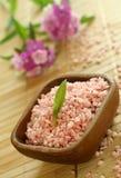 浴碗开花木桃红色的盐 库存图片