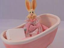 浴缸兔宝宝 库存照片