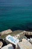 海'母马'在岩石 库存照片