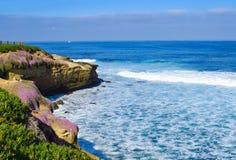 海、天空和开花的峭壁在拉霍亚小海湾在圣地亚哥,加利福尼亚 库存图片